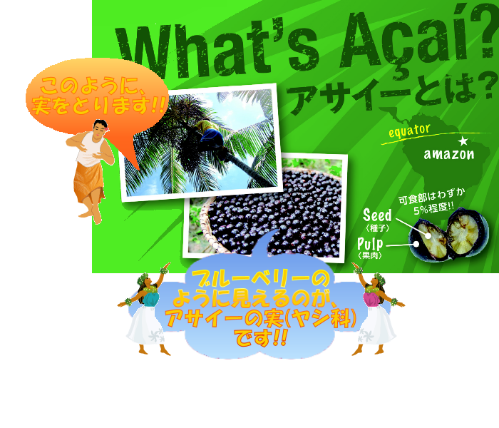 WhatsAcai_A4_C01