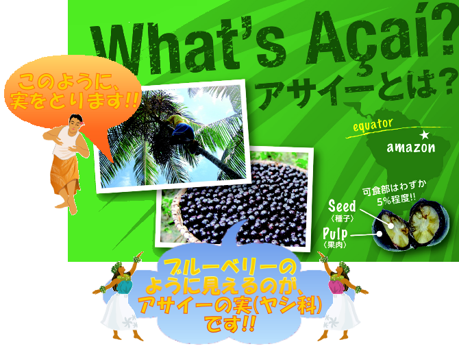 WhatsAcai_A4_C01_670-515