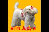 judy20141016_A002-165x110